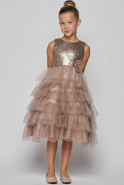 Sleeveless Beaded and Layered  Flower Girl Dress