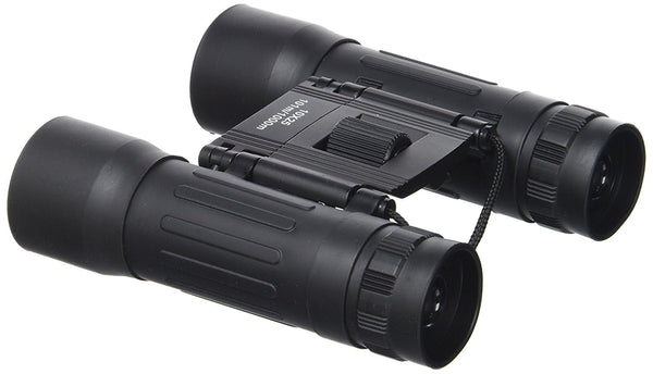 Rubberized 10 x 25 Binoculars with Carrying Case