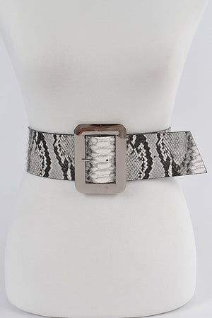Carty Belt