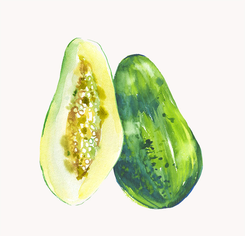 green papaya illustration