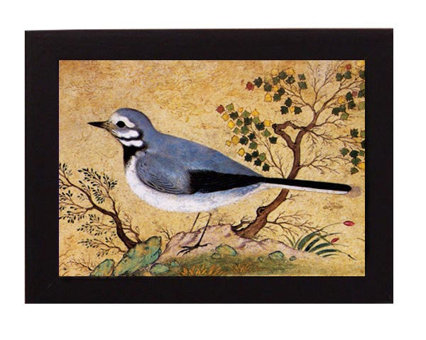 Study of a Bird. Iran. Safavid period. Overall frame size 6 x 8 inches.