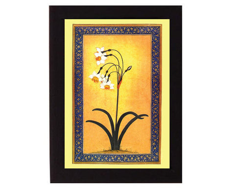 Study of  Narcissus Plant. Mughal India.   Overall frame size 6 x 8 inches.