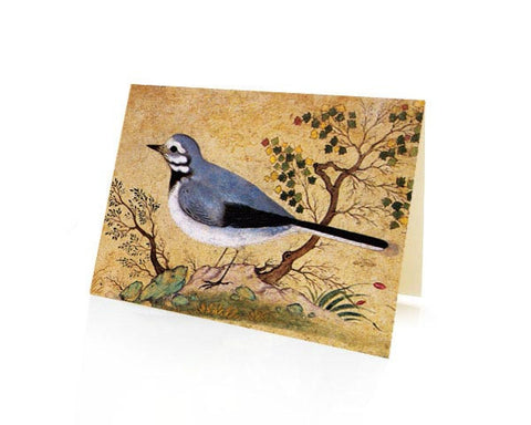 Study Of A Bird.  BLANK GREETING CARD. Printed on Extra Heavy Paper Stock.