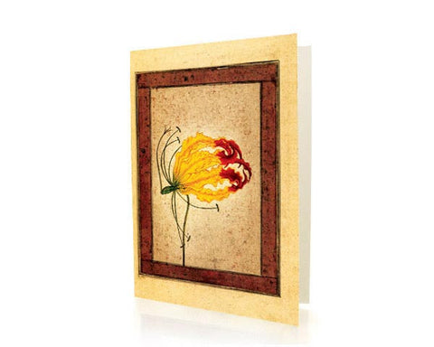 Study Of A Flame Lily.  BLANK GREETING CARD. Printed on Extra Heavy Paper Stock.