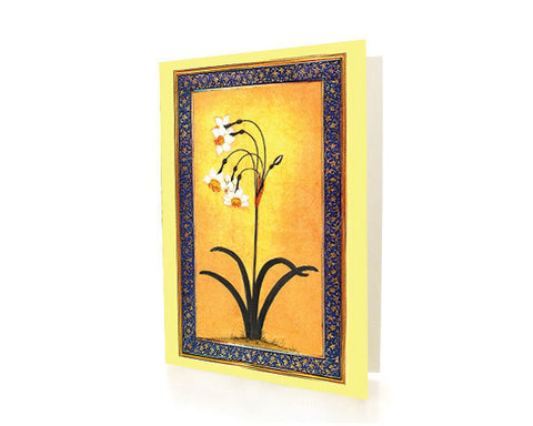 Study of a Narcissus Plant. BLANK GREETING CARD.  Printed on Extra Heavy Paper Stock.