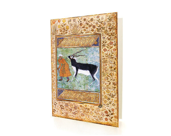 Indian Black Buck. BLANK GREETING CARD.  Printed on Extra Heavy Paper Stock.