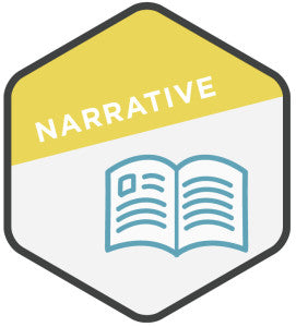 Customer Conversion Campaign: Narrative