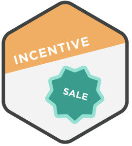 Customer Conversion Campaign: Incentive