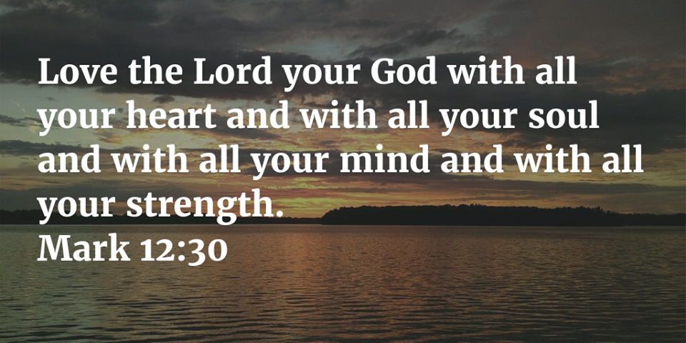 Love the Lord your God with all your heart and with all your should and with all your mind and with all your strength.  Mark 12:30