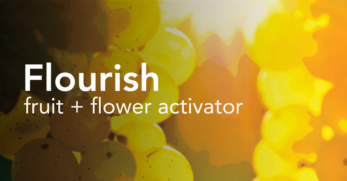 Flourish™ - Fruit & Flower Activator