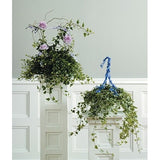Ivy Green Plants and Lavender Roses - Flowers by Pouparina