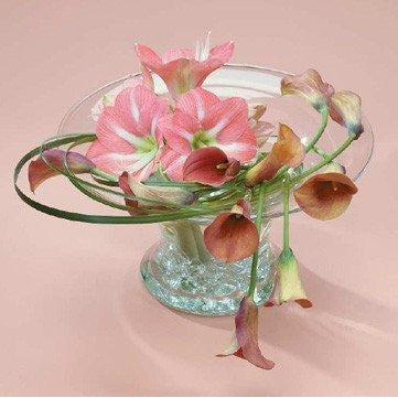Elegant and Clasy Pink Amaryllis and Callas Flowers Tribute - Flowers by Pouparina