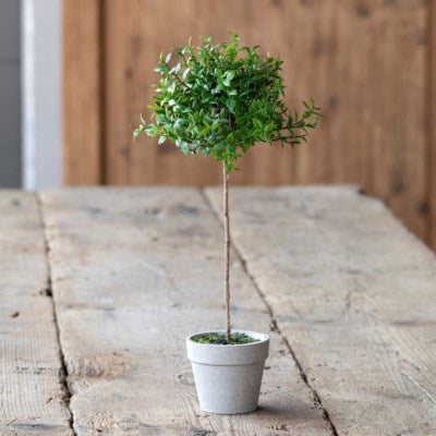 Rustic Boxwood Topiary Collection