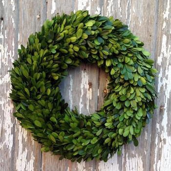 Country Manor Boxwood Wreath Collection