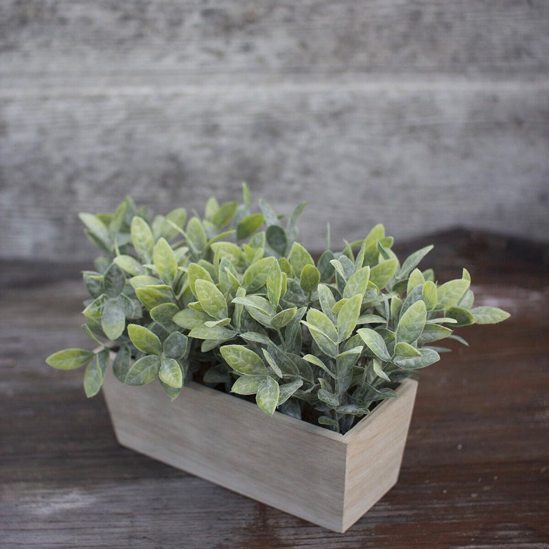 Artificial Thyme