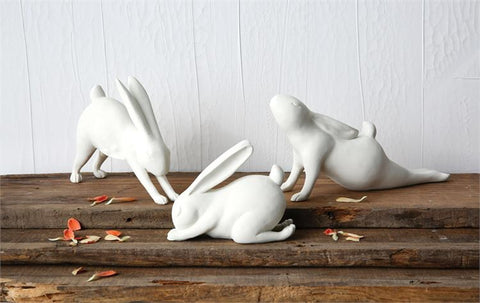 Yoga Stretching Rabbits