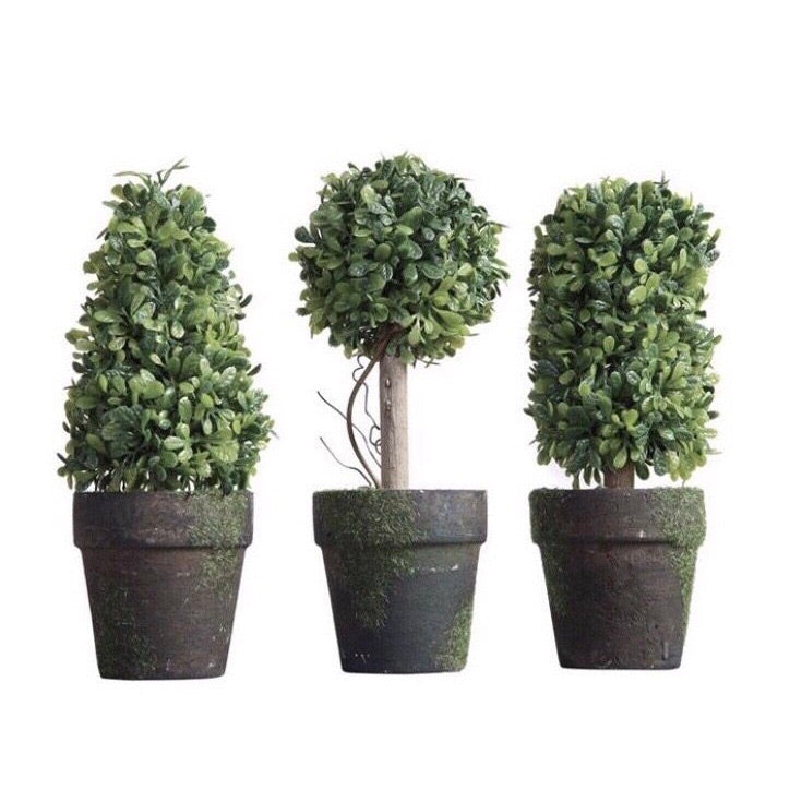 Artificial Topiaries