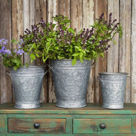 Wide Mouth Flower Buckets