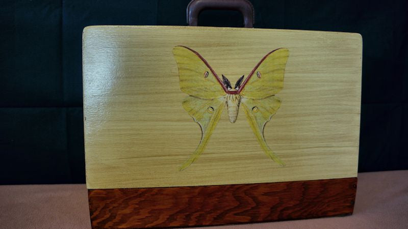 Luna Moth Vintage Sewing Machine Case