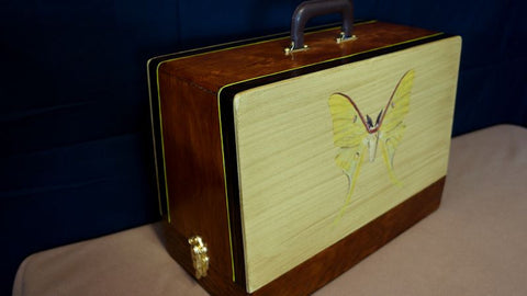 Vintage Case - Luna Moth w/ Gold Accents