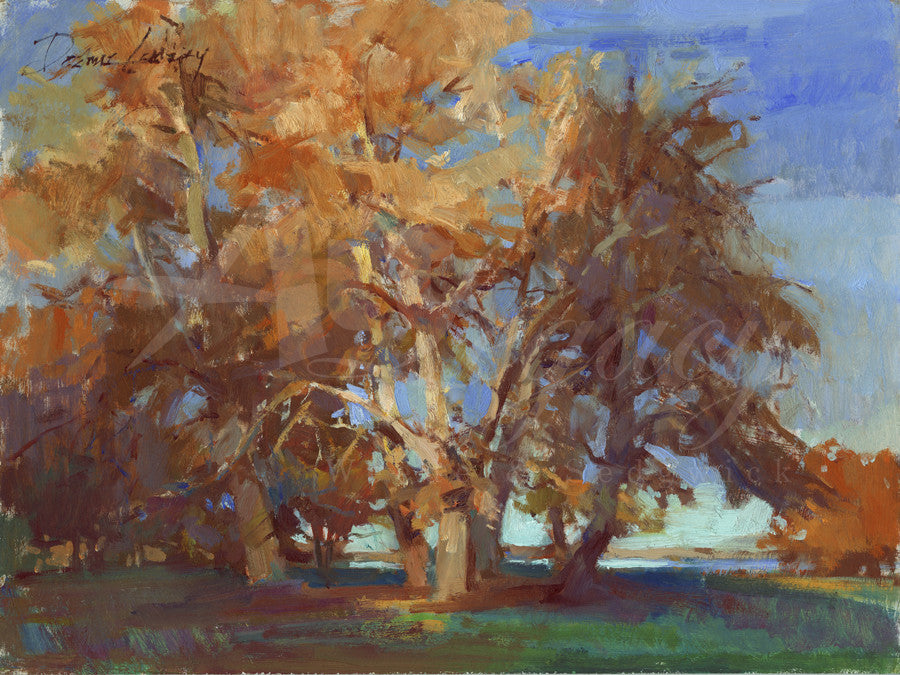 Autumn Trees in evening light