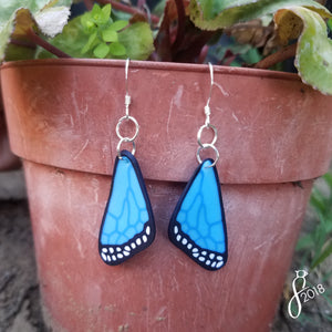 Blue Butterfly Wing Earrings