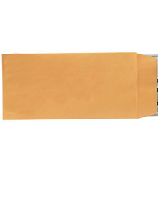 LICENSE PLATE ENVELOPES - BLANK SELF SEAL (100) - Sisupplies.com