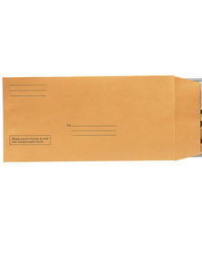 LICENSE PLATE ENVELOPES WITH IMPRINTED LINES (100) - Sisupplies.com