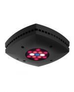 Refugium Sump light AI Prime