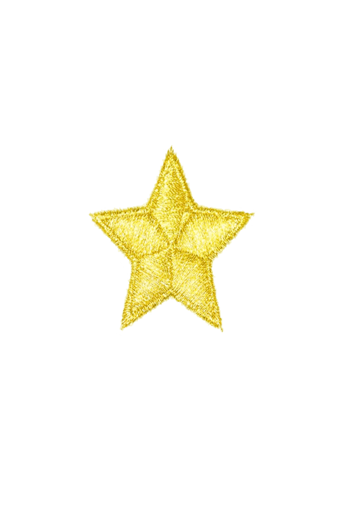 Gold Star Iron On patch_tag from me.n.u