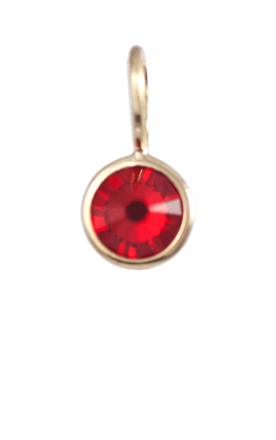 January Birthstone Gold Charm