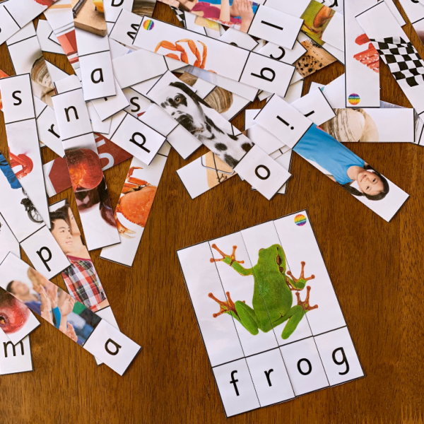 CCVC Word Cards + Puzzles