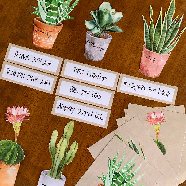CACTUS Editable Birthday Display