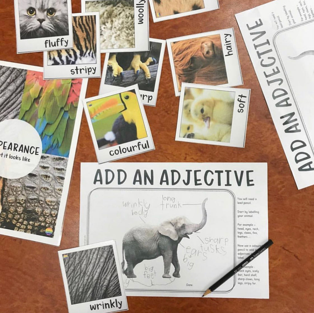 Add An Adjective Informational Text Writing Centre