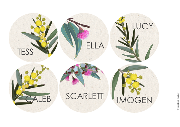 AUSSIE FLORA Classroom Labels + Signs Pack