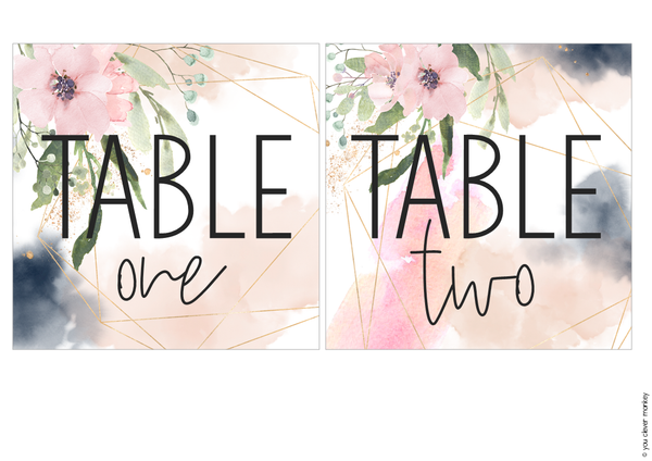 BLUSH + NAVY Classroom Labels + Signs Pack