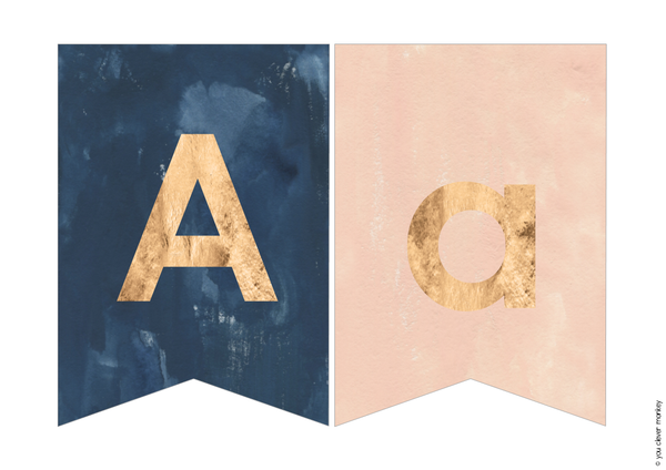 BLUSH + NAVY Classroom Bunting Pack