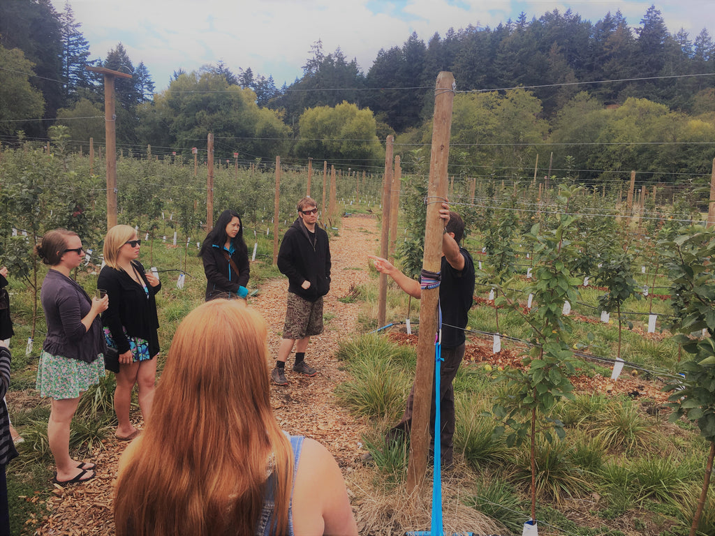 BC Cider Tour at Tod Creek Craft Cider Victoria