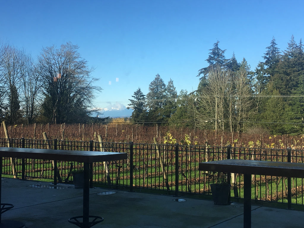 Township 7 Winery | Fraser Valley Winery