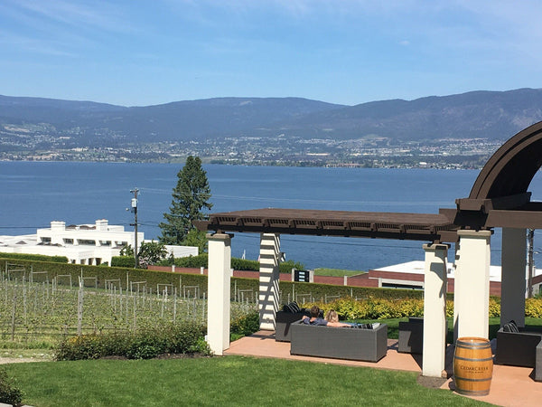 Kelowna Winery View