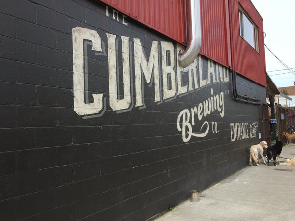 North Island Brewery Tour | Cumberland, Courtney Brewery Tour