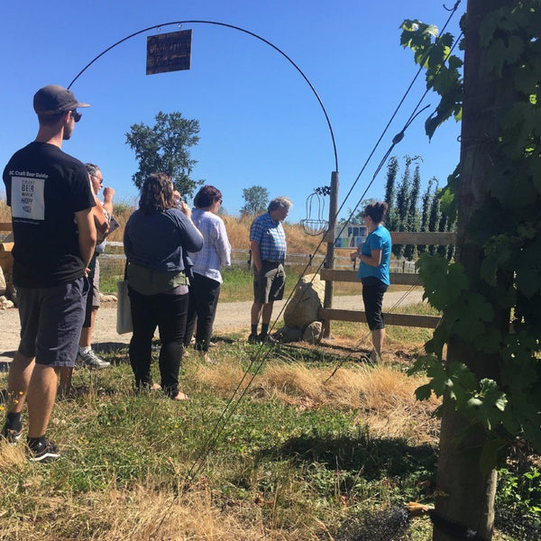 Vineyard tour at Chaberton
