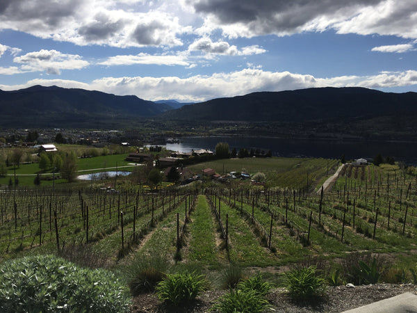Naramata Wineries