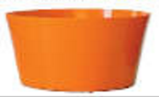 Dish Garden Asst. 2043, Orange (Pack of 18)