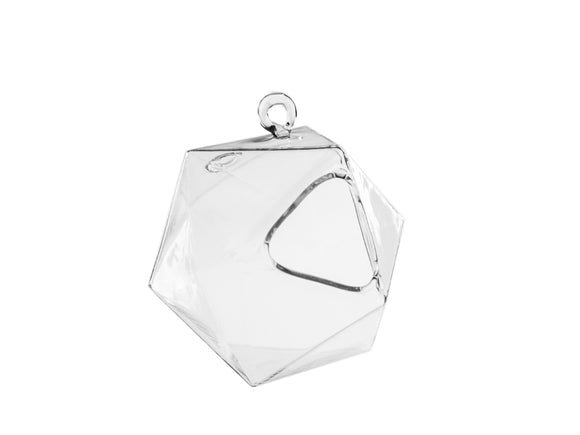 Frameless Geometric Glass Terrarium - Dim: 4.1