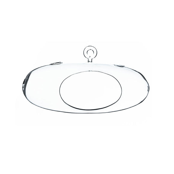 Flattened Oval Hanging Terrarium,Height: 4