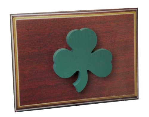 OASIS® Scenic Shape, Shamrock, 1 pack - ifloral.com
