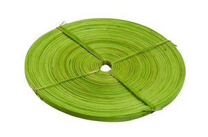 OASIS™ Flat Cane, Apple Green, 6/case - ifloral.com