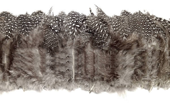 Strung Guinea Fowl Plumage, Small Eyes 2-3