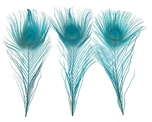 Cut Peacock Eyes 10-12